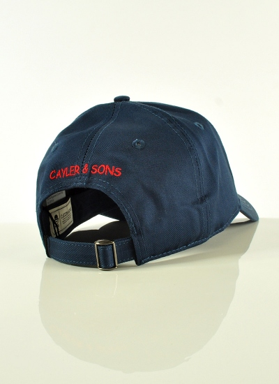 Cayler & Sons  Biggenstein Curved Hat